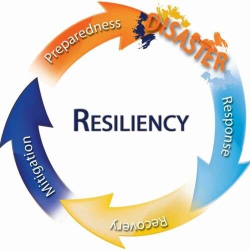 Resiliency Image Circle